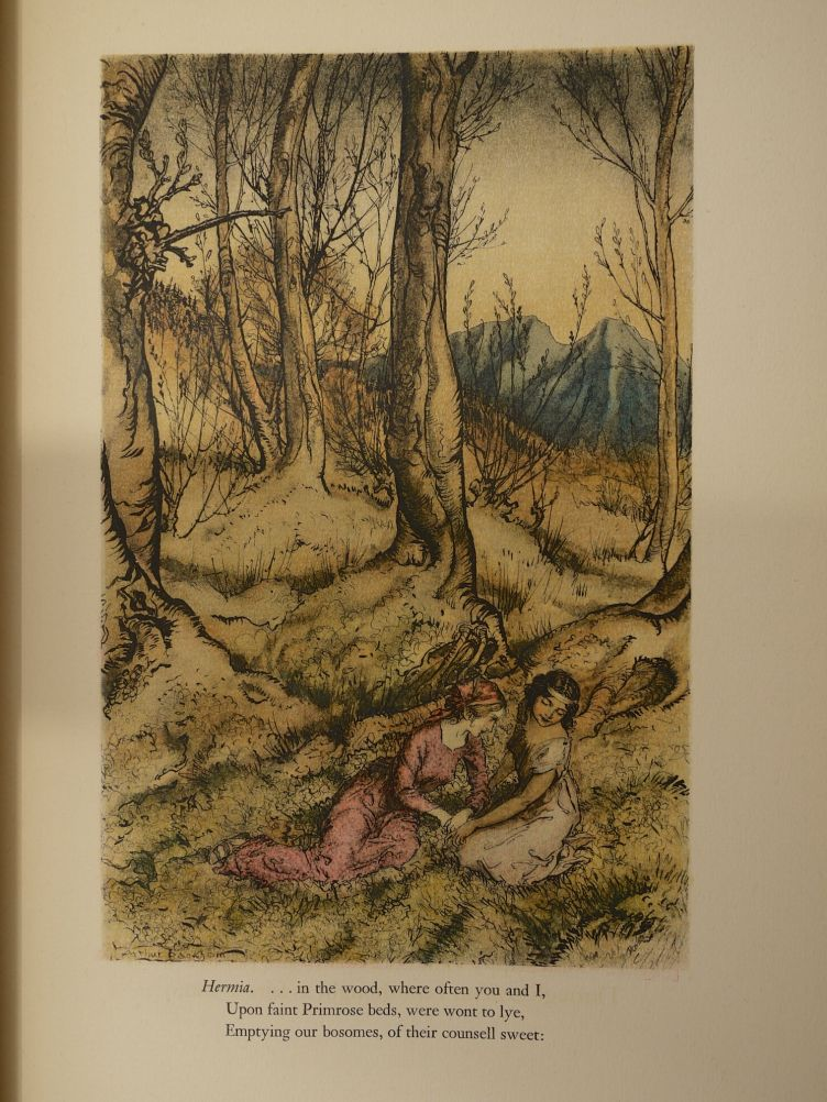 A Midsummer Night's Dream by William Shakespeare with Illustrations by Arthur Rackham (1939) illustration #2.