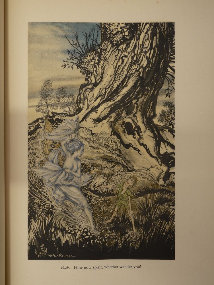 A Midsummer Night's Dream by William Shakespeare with Illustrations by Arthur Rackham (1939) illustration #3.