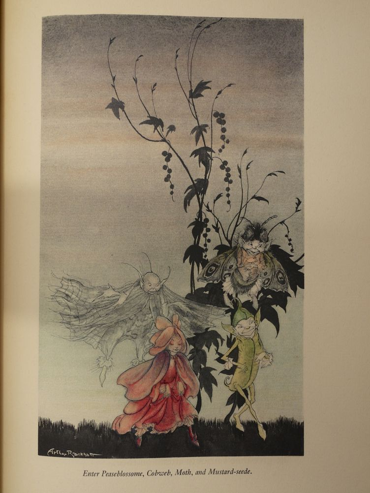 A Midsummer Night's Dream by William Shakespeare with Illustrations by Arthur Rackham (1939) illustration #4.