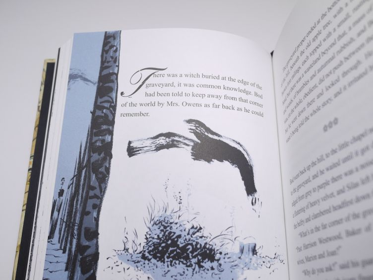 The Graveyard Book by Neil Gaiman with illustrations by Dave Mckean (2008) Dave McKean artwork #6.